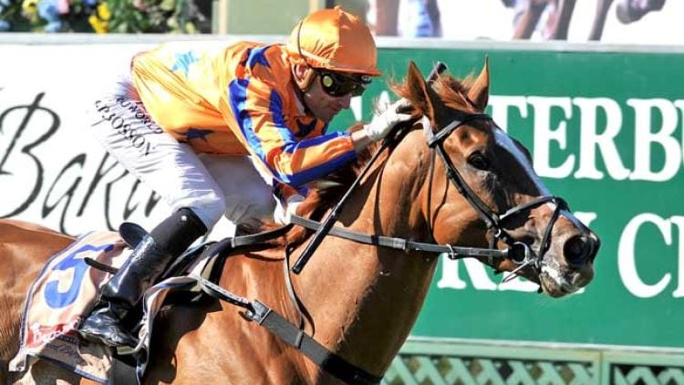 Chipping norton stakes betting websites mlb betting news