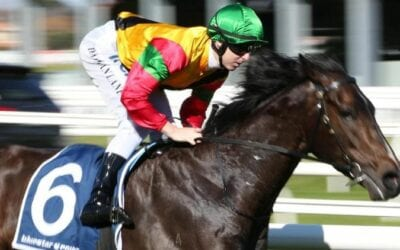 Toorak Handicap 2019 – Horses, Betting Tips & Odds
