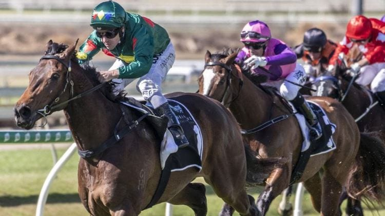 Caulfield Guineas 2019 – Horses, Betting Tips & Odds