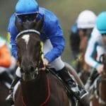 avilius racehorse