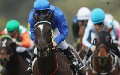 Australian Cup 2020 – Horses, Betting Tips & Odds
