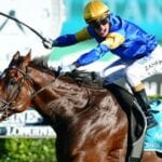 santa ana lane racehorse