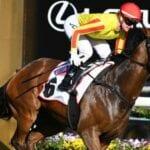 gatting racehorse