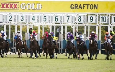6/11/19 – Wednesday Horse Racing Tips for Grafton