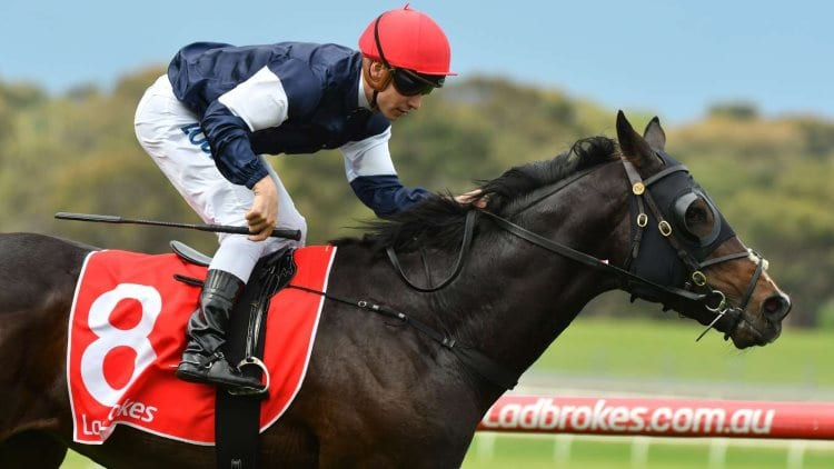 Zipping Classic Day Betting Tips for Sandown & Rosehill