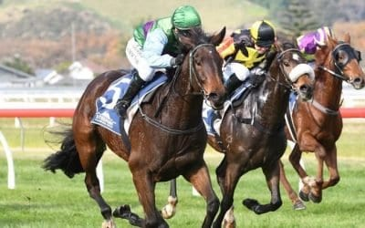 December 5, 2018 – Wednesday Horse Racing Tips for Warwick Farm & Sandown