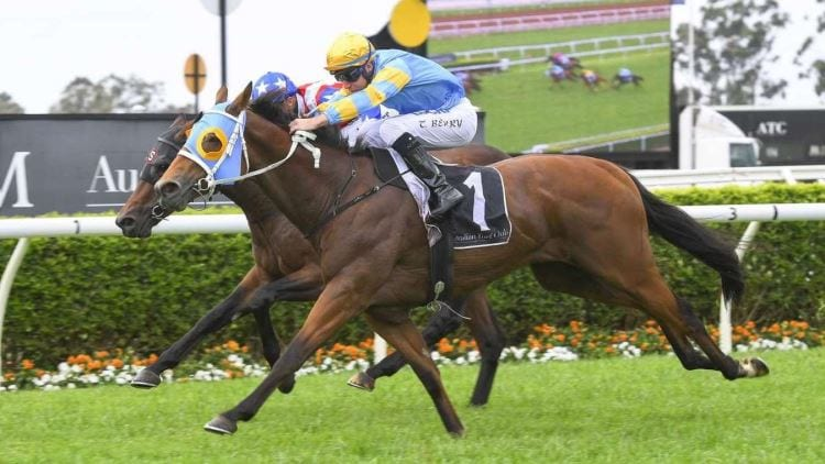 16/10/19 – Wednesday Horse Racing Tips for Warwick Farm