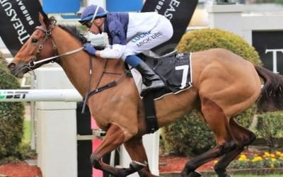 09/01/19 – Wednesday Horse Racing Tips for Doomben
