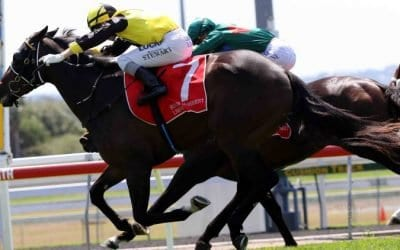 02/01/19 – Wednesday Horse Racing Tips for Doomben