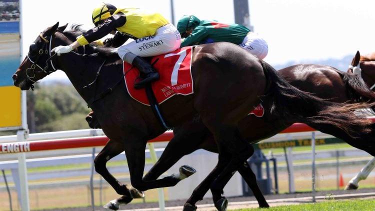 02/01/19 – Wednesday Horse Racing Tips for Doomben