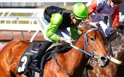 February 1, 2019 – Friday Night Horse Racing Tips for Moonee Valley & Canterbury