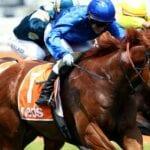 hanseatic racehorse
