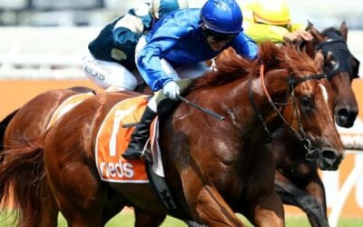Blue Diamond Stakes 2020  – Horses, Betting Tips & Odds