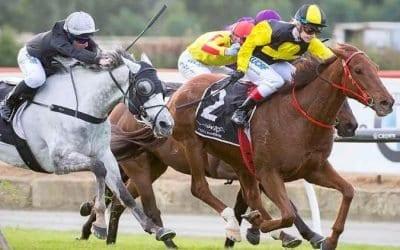 02/03/19 – Saturday Horse Racing Tips for Flemington & Randwick