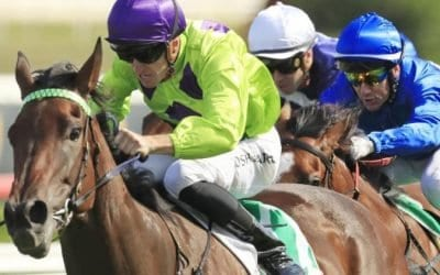 Surround Stakes 2019 – Field Preview, Odds & Tips