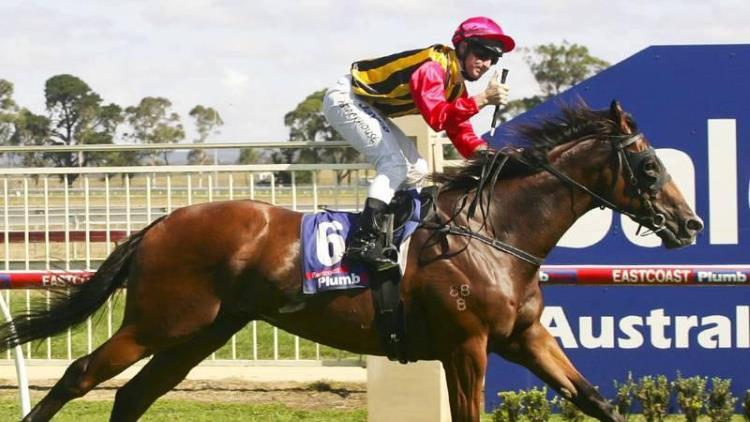 peko racehorse