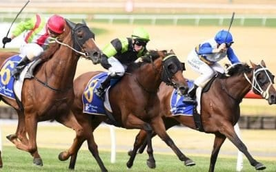 February 22, 2019 – Friday Night Horse Racing Tips for Canterbury & Moonee Valley