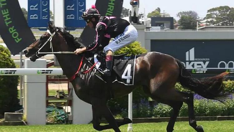 09/02/19 – Saturday Horse Racing Tips for Doomben