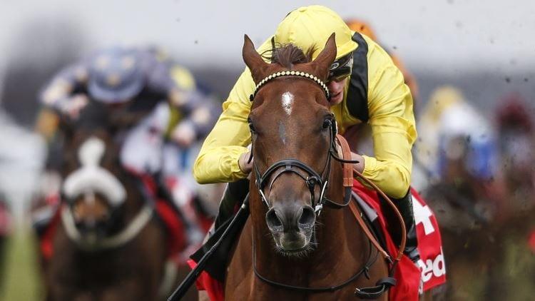 Ranvet Stakes 2020 – Horses, Betting Tips & Odds