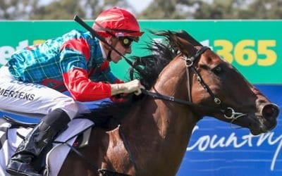 02/03/19 – Saturday Horse Racing Tips for Doomben