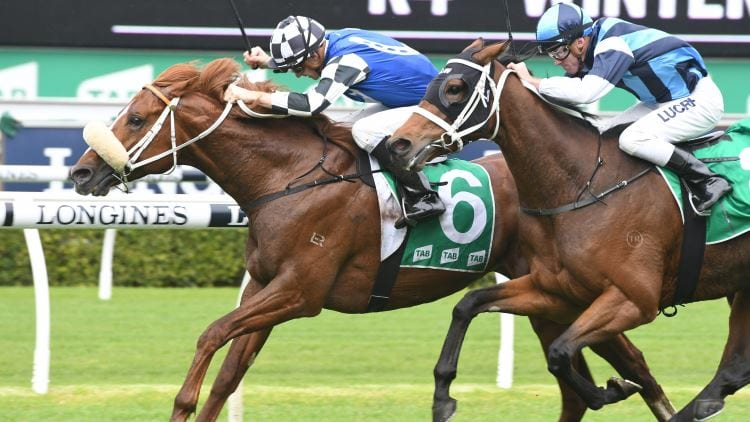 30/03/19 – Saturday Horse Racing Tips for Doomben