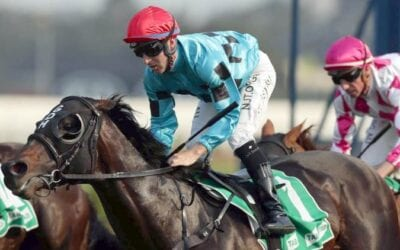The Galaxy 2020 – Horses, Betting Tips & Odds