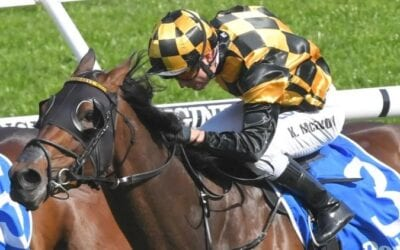 probabeel race horse