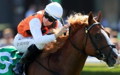 Canterbury Stakes 2020 – Horses, Betting Tips & Odds