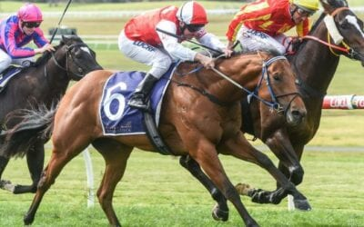 March 22, 2019 – Friday Night Horse Racing Tips for Moonee Valley