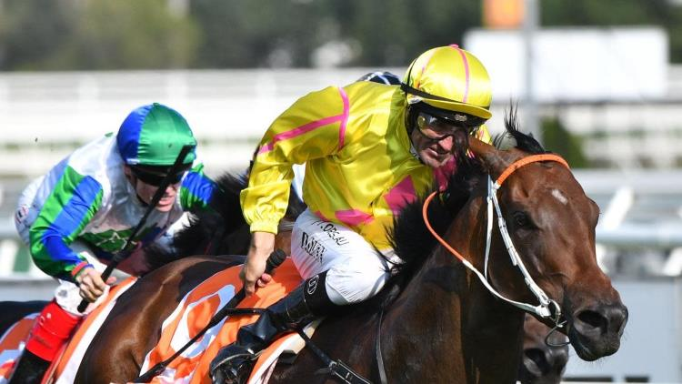 Coolmore Classic 2020 – Horses, Betting Tips & Odds