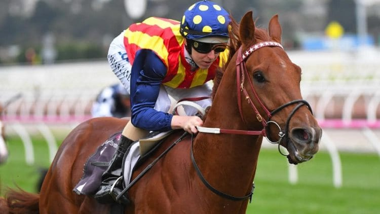 T.J. Smith Stakes 2020 – Horses, Betting Tips & Odds