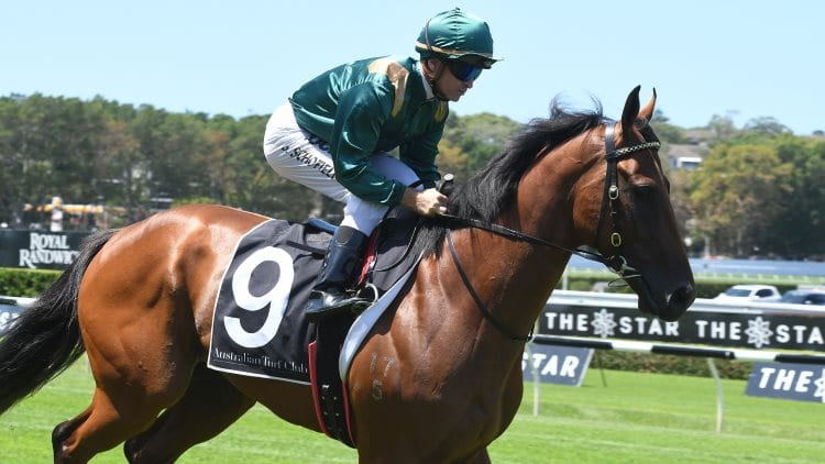 1/05/19 – Wednesday Horse Racing Tips for Warwick Farm