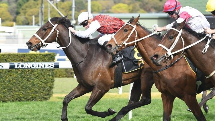 6/04/19 – Saturday Horse Racing Tips for Toowoomba