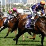 declares war racehorse