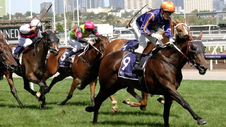 18/05/19 – Saturday Horse Racing Tips for Flemington