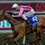 hacksaw ridge racehorse