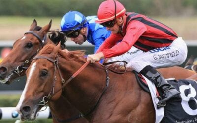 1/06/19 – Saturday Horse Racing Tips for Rosehill