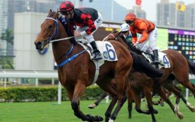 1/07/19 – Monday Horse Racing Tips for Sha Tin