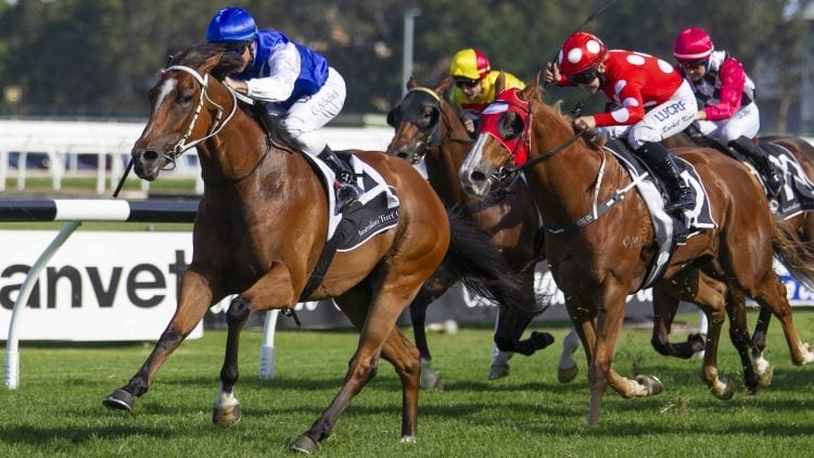 30/11/19 – Saturday Horse Racing Tips for Rosehill