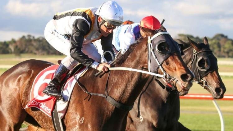 22/06/19 – Saturday Horse Racing Tips for Flemington
