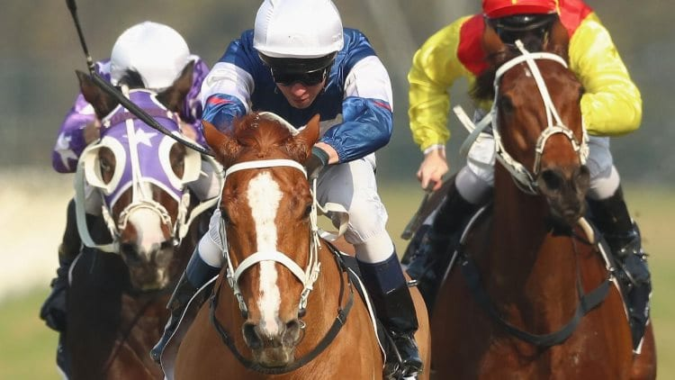 12/06/19 – Wednesday Horse Racing Tips for Warwick Farm