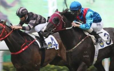 23/06/19 – Sunday Horse Racing Tips for Sha Tin
