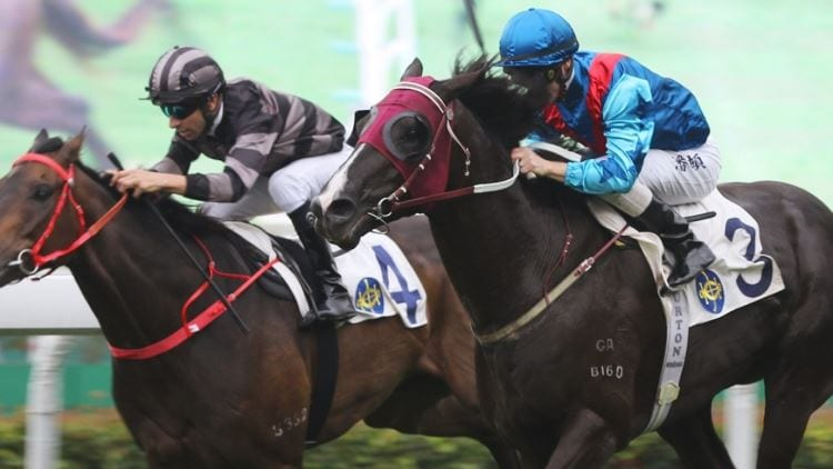 23/06/19 – Sunday Horse Racing Tips for Sha Tin