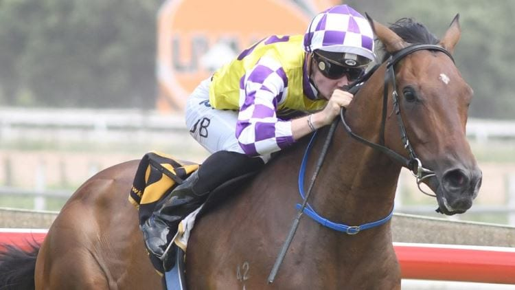 19/06/19 – Wednesday Horse Racing Tips for Doomben