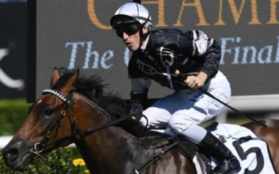 The Kosciuszko 2019 – Horses, Betting Tips & Odds