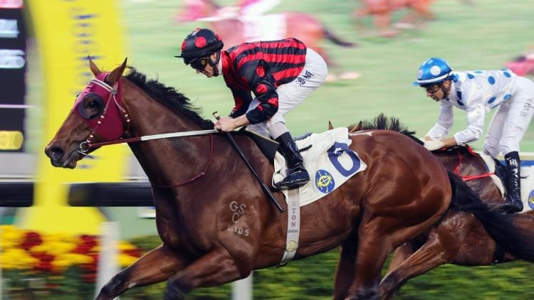 14/07/19 – Sunday Horse Racing Tips for Sha Tin