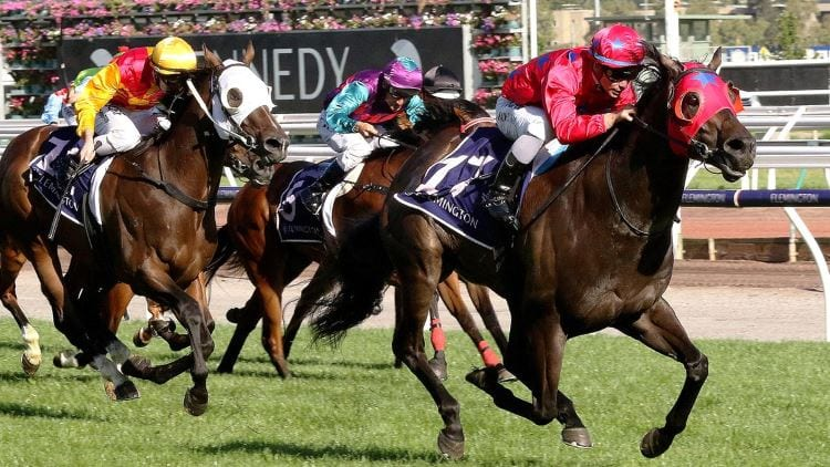 3/08/19 – Saturday Horse Racing Tips for Moonee Valley