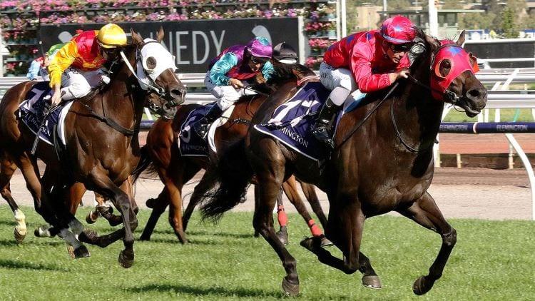 Flemington Horse Racing Tips - Saturday, July 20th 2019 | GoBet