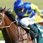 le romain racehorse