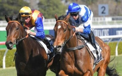 21/09/19 – Saturday Horse Racing Tips for Randwick